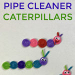 How To Create Colorful Pipe Cleaner Caterpillars