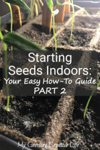 Starting Seeds Indoors – Your Easy How-To Guide: Part 2