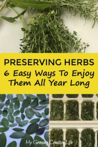 Preserving Herbs Through Drying, Freezing, Butter, Pesto, and Syrup