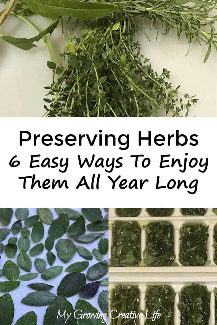 Preserving Herbs:  6 Easy Ways To Enjoy Them All Year Long